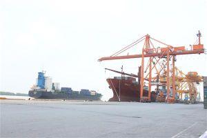 Cảng container quốc tế Hải Phòng áp dụng phần mềm quản lý hiện đại