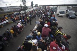 Nước Mỹ đau đầu trước làn sóng di cư từ Mỹ Latinh