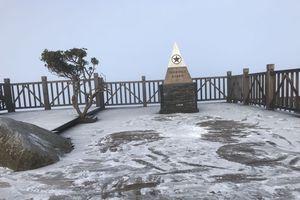 Đỉnh Fasipan xuất hiện sương muối phủ trắng