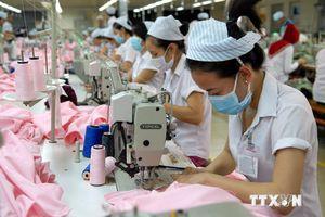Trao đổi thương mại Việt Nam – Brazil tăng gần 15%