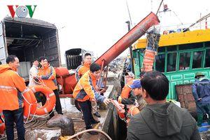 Phát phao tròn, tài liệu tuyên truyền an toàn cho ngư dân Nam Định