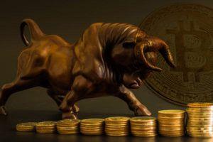Giá Bitcoin hôm nay 17/1: Có một đồng tiền ảo tăng 41,7%