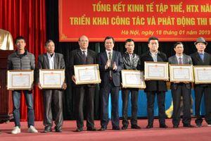 Hà Nội: Doanh thu các hợp tác xã đạt gần 4.500 tỷ đồng
