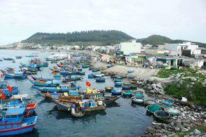 Quảng Ngãi đề xuất xây dựng mức thu phí tham quan đảo Lý Sơn
