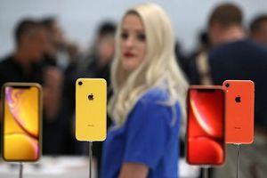 iPhone Xr 2019 sẽ có thiết kế ăng-ten mới