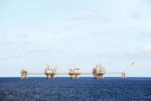 Ngành dầu khí trong cơn 'khát' dầu
