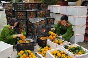 Phát hiện gần 2 tấn hoa quả không rõ nguồn gốc xuất xứ ở Nghệ An