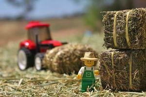 Bỏ 135 triệu USD thâu tóm 3 'siêu' trạm chăn nuôi, Tập đoàn TH sẽ làm gì tại Australia?