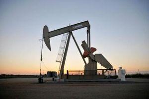 Phiên giao dịch bình lặng của thị trường dầu mỏ thế giới