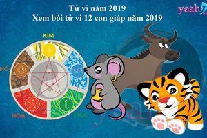 Tử vi 2019: Vận mệnh của 12 con giáp năm Kỷ Hợi sẽ ra sao ? (P1)
