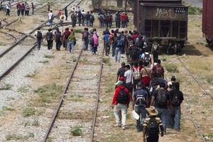 Mỹ bắt giữ nhóm nhập cư bất hợp pháp lớn nhất lịch sử tại biên giới với Mexico