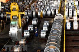 Brazil: Đối phó với biện pháp bảo hộ thép của EU