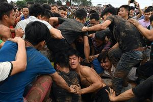 Không tổ chức lễ hội bạo lực, phản cảm