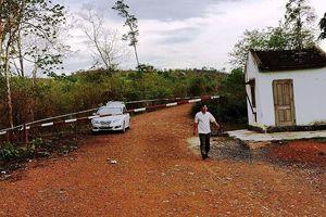 Vụ gỗ lậu Phượng 'râu': Khởi tố thêm trạm trưởng bảo vệ rừng