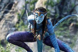 Lịch ra mắt siêu phẩm Avatar 2 và 3 được xác định