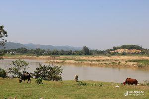 Phát hiện thi thể nam thanh niên trôi trên sông Lam
