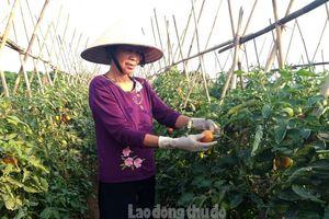 Không ngừng nâng cao đời sống người dân nông thôn