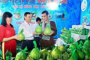 Hàng nghìn người tham dự khai mạc Lễ hội 'Hương bưởi Bạch Đằng' lần 2