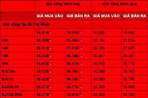 Giá vàng trong nước 19/1 giảm nhẹ, mua bán 36,63 - 36,73 triệu đồng/lượng