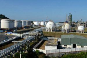 Lọc hóa dầu Bình Sơn báo lỗ hơn 1.000 tỷ, dàn lãnh đạo hầu tòa