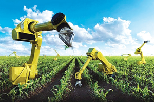 Tầm nhìn bao trùm và bền vững trong nông nghiệp