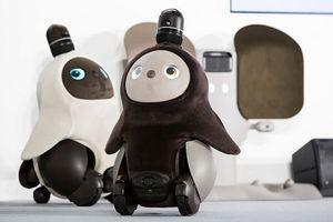 Những robot siêu dễ thương thời 4.0