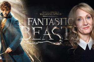 'Fantastic Beasts 3' dời quá trình sản xuất đến cuối năm 2019