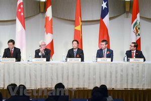 Phiên họp đầu tiên Hội đồng CPTPP: Khẳng định quyết tâm thực thi đầy đủ Hiệp định,