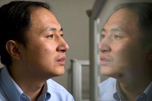 Trung Quốc công bố kết quả điều tra nhà khoa học chỉnh sửa gene người