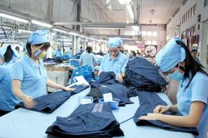 CPTPP bắt đầu 'hà hơi' vào thương mại quốc tế
