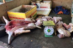 Đồng Nai: Bắt giữ hàng tấn heo chết mổ thịt bán cho người tiêu dùng