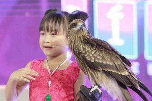 Kinh ngạc trước tài huấn luyện diều hâu của cô bé 6 tuổi ở Biệt Tài Tí Hon