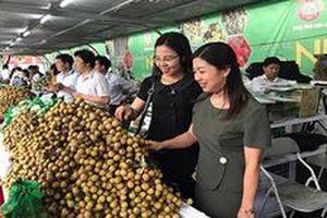 Cơ hội xuất khẩu sang thị trường Australia của Việt Nam