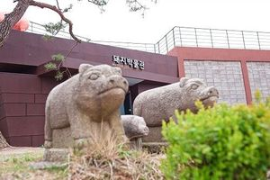 Độc đáo bảo tàng lợn siêu dễ thương ở Hàn Quốc