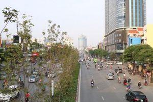 Hà Nội sẽ trồng 150.000 cây xanh dịp đầu Xuân Kỷ Hợi