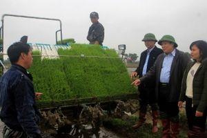 Lần đầu tiên máy cấy tự động xuất hiện trên cánh đồng Quảng Trị