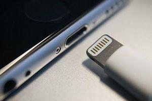 Phản ứng trái chiều trước tin iPhone sắp hỗ trợ sạc USB-C
