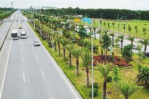Hà Nội sẽ trồng thêm 600.000 cây xanh trước năm 2020