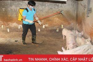 Dính 'bão' dịch lở mồm long móng, người chăn nuôi Thạch Hội lao đao