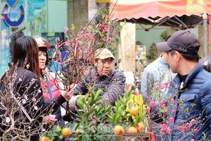 Hà Nội: Phố phường rộn ràng ngày giáp Tết