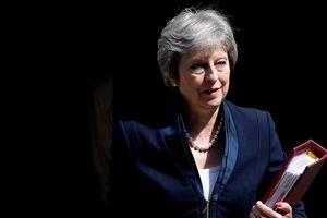 Bản kế hoạch Brexit của bà May sẽ chỉ là 'bình mới rượu cũ'