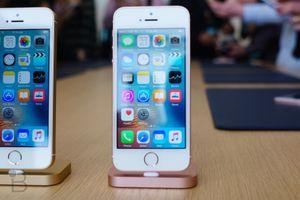 Apple bán sạch iPhone SE chỉ sau một ngày lên kệ vì giá quá rẻ