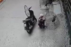 Bị truy bắt, tên trộm gà chọi dùng ná bắn hỏng mắt công an viên