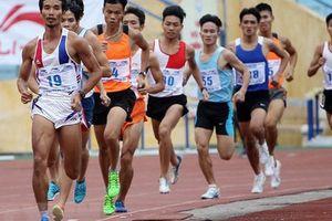 Tổ chức hoạt động thể dục, thể thao trong dịp Tết Kỷ Hợi 2019