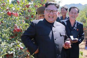 Ông Kim Jong-un tặng 'quà độc' cho quan chức dịp năm mới