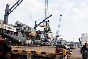 Công ty CP Cảng Quy Nhơn bị phạt, trả lại toàn bộ tiền chênh lệch