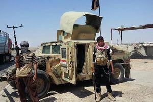 Taliban sử dụng xe Humvee đánh cắp do Mỹ sản xuất để khủng bố Afghanistan
