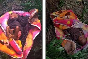 Bị chôn sống dưới cái lạnh 3 độ C, bé gái 3 tuần tuổi sống sót kỳ diệu