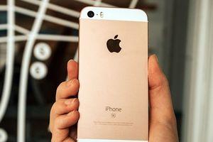 iPhone SE bán hết 'trong một nốt nhạc' sau khi mở bán trở lại
