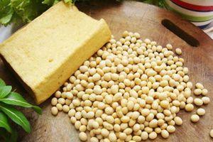 Hướng dẫn các mẹ cách làm các món chay từ đậu nành